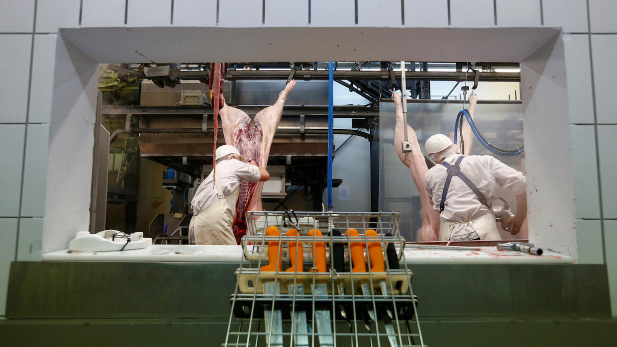 Photo of Covid-19: How the meat industry became a global health liability
