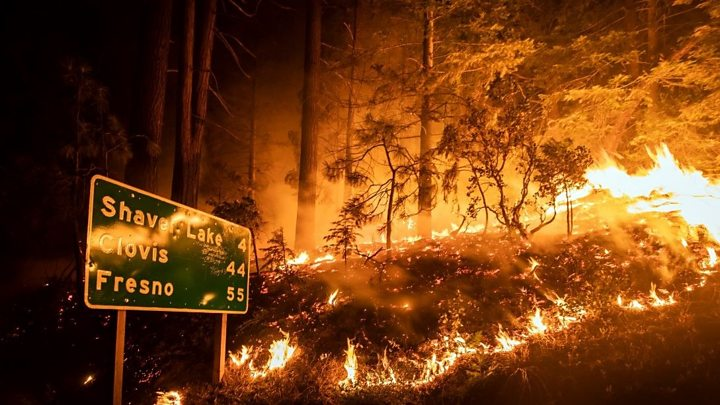 Photo of Wildfires burn through record area in California as blazes continue to spread