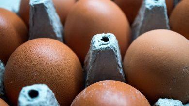 Photo of Aldi, Sainsbury's, Asda, Morrisons & Costco update advice over eggs amid salmonella fear