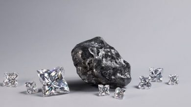 Photo of Louis Vuitton purchases second large Botswana diamond