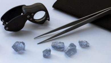 Photo of De Beers, Diacore buy 'Letlapa Tala' blue diamonds for US$40m