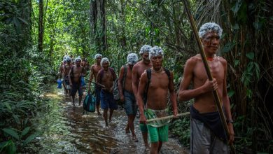 Photo of The indigenous tribes fighting the curse of xawara in the Amazon